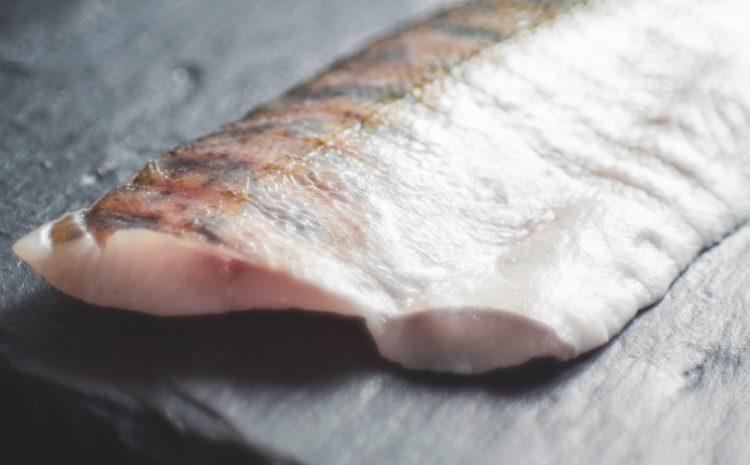 Dietista: perché mangiare pesce fa bene