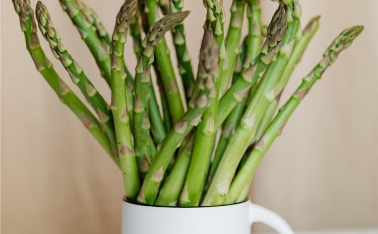 Dietista: la verdura principe della primavera, gli asparagi!