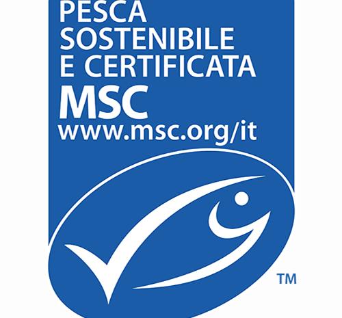 Pesce certificato MSC: un impegno per l'ambiente